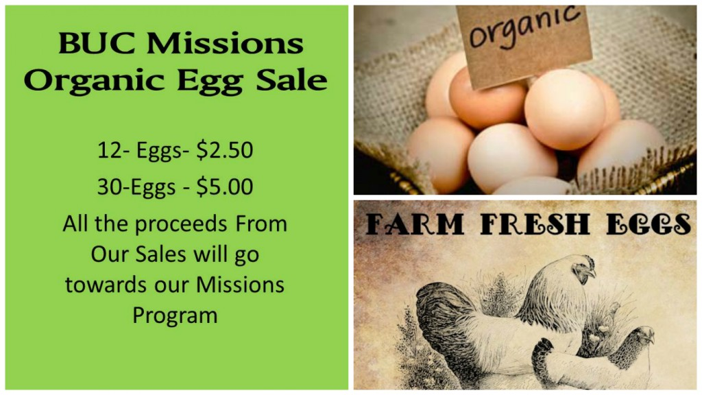 FotorCreated-egg sale